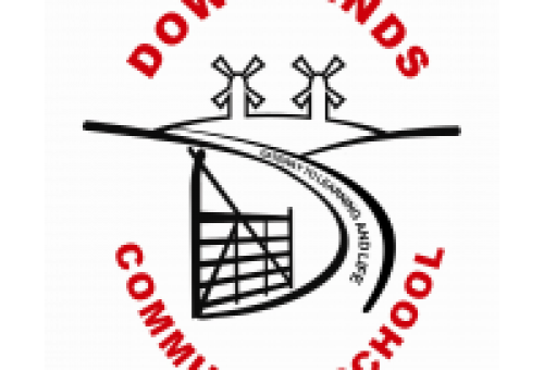downlands summer fayre school logo