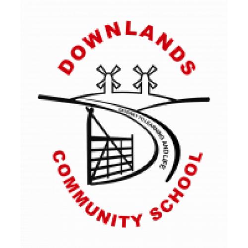 downlands summer fayre school logo